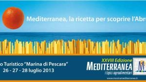 Medi_centrale_Web_2013
