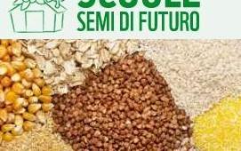 semi_di_futuro_1