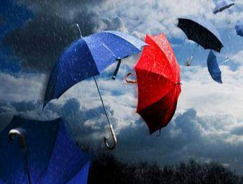 Vento forte e pioggia torrenziale spazzano via la for Sotto la pioggia ombrelli