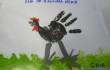 gallina nera disegno