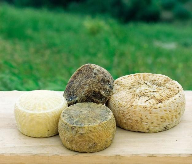 formaggio abruzzo