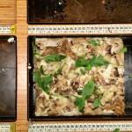 Pizza a centimetri