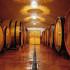 fatturato vino