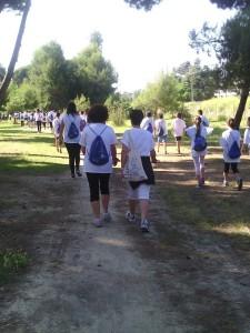 walk of life verso torre cerrano