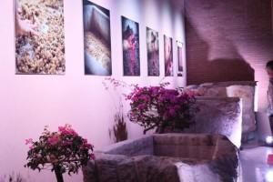 Vasche di pietra di varie dimensioni adoperate da Chiusa Grande